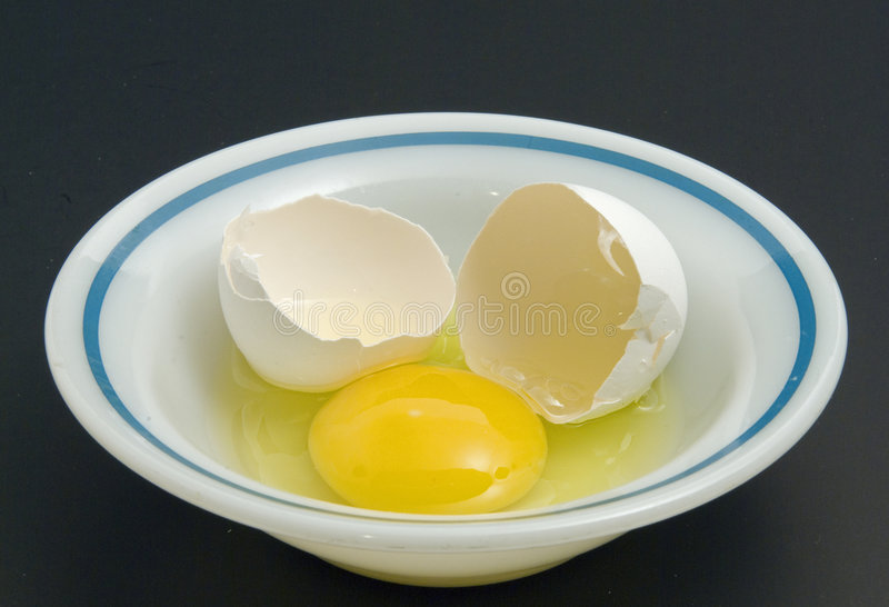 Egg and shell royalty free stock image