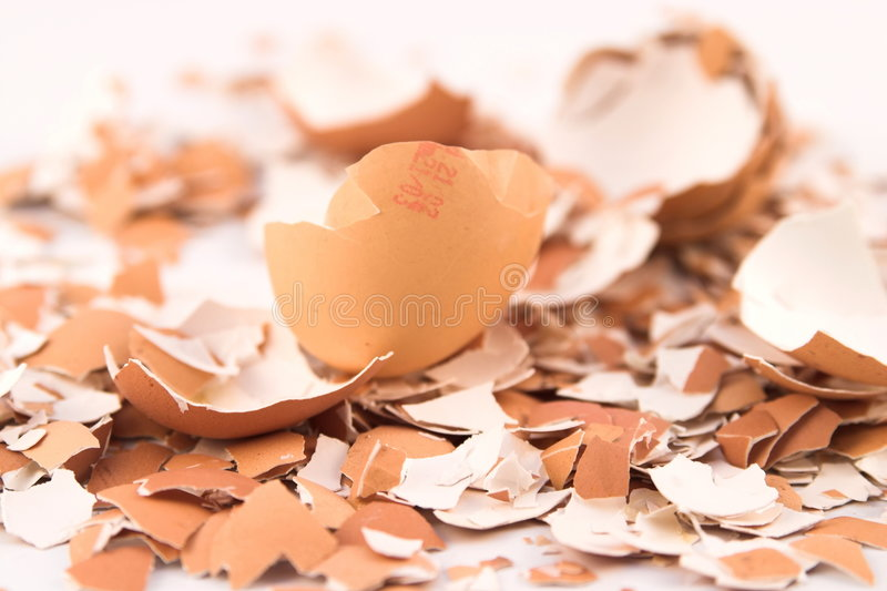 Egg Shell Crashed Close royalty free stock photos