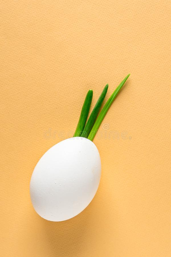 Egg shell and feathers green onion imitation sprout, leaves pineapple, fruit, Iroquois hair hairstyle on face, on beige colored ba. Egg shell and feathers green stock photo