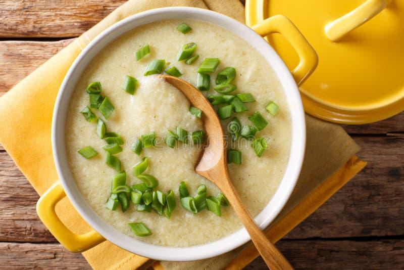Egg a sopa da gota com macro fresco da cebola verde em uma bacia horizontal imagem de stock royalty free