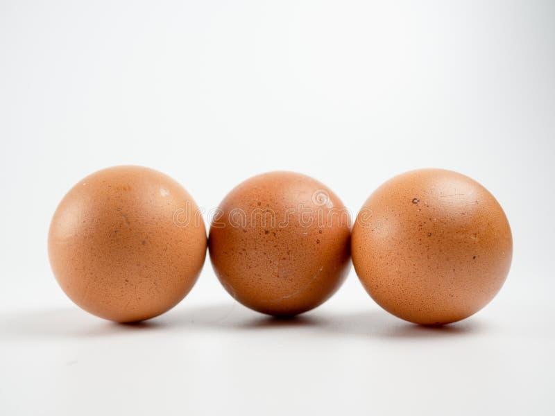 Egg on white background isolate. Egg on white background isolate stock photos