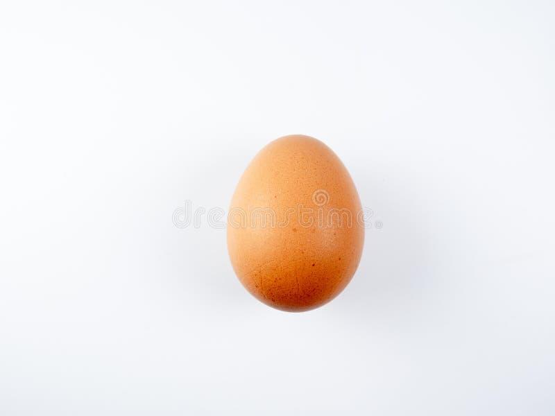 Egg on white background isolate. Egg on white background isolate stock image