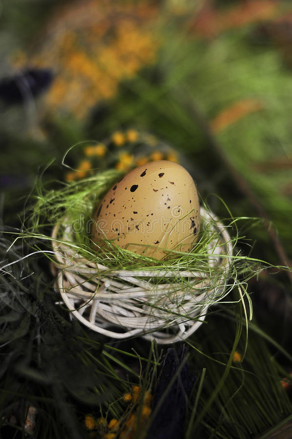 Egg. Yellow Easter egg in a nest for the birds stock photos