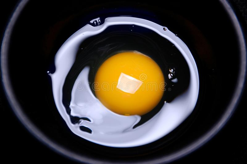 Egg and yolk. On black background royalty free stock photo