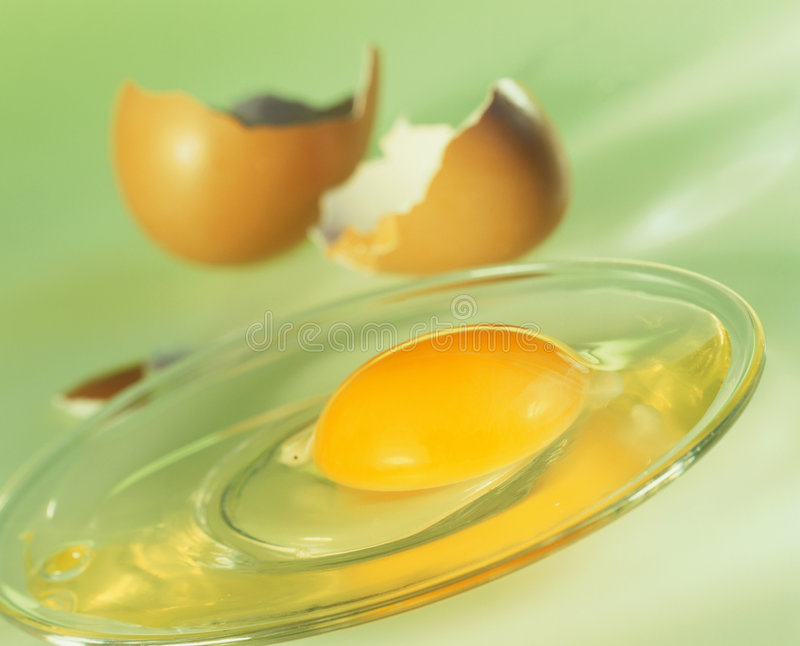 Egg yolk. On plate, egg shells behind royalty free stock images