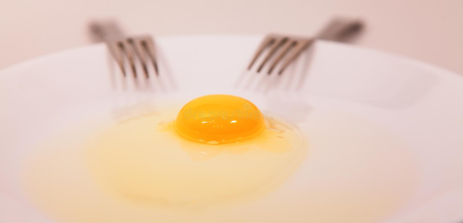 Egg Yolk and Forks stock photography