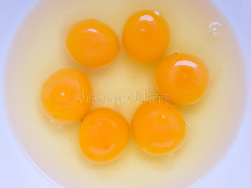 Egg yolk. S and gelatin of albumin are good source of cheap protein royalty free stock photo