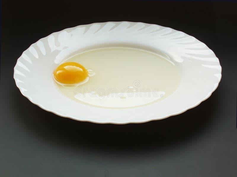 egg18仍然生活 库存照片