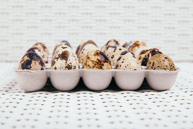 Egges in scatola a bordo immagine stock libera da diritti