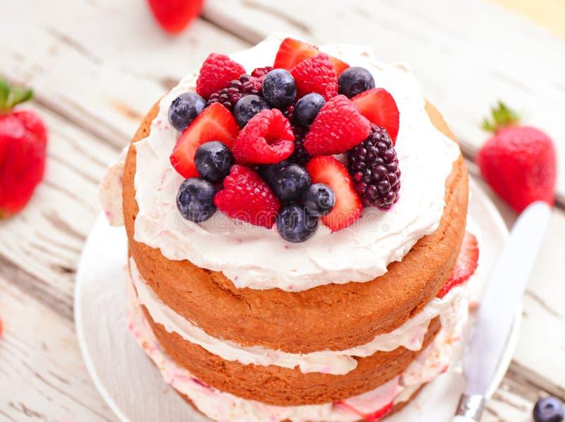 Eggless торт стоковые фото