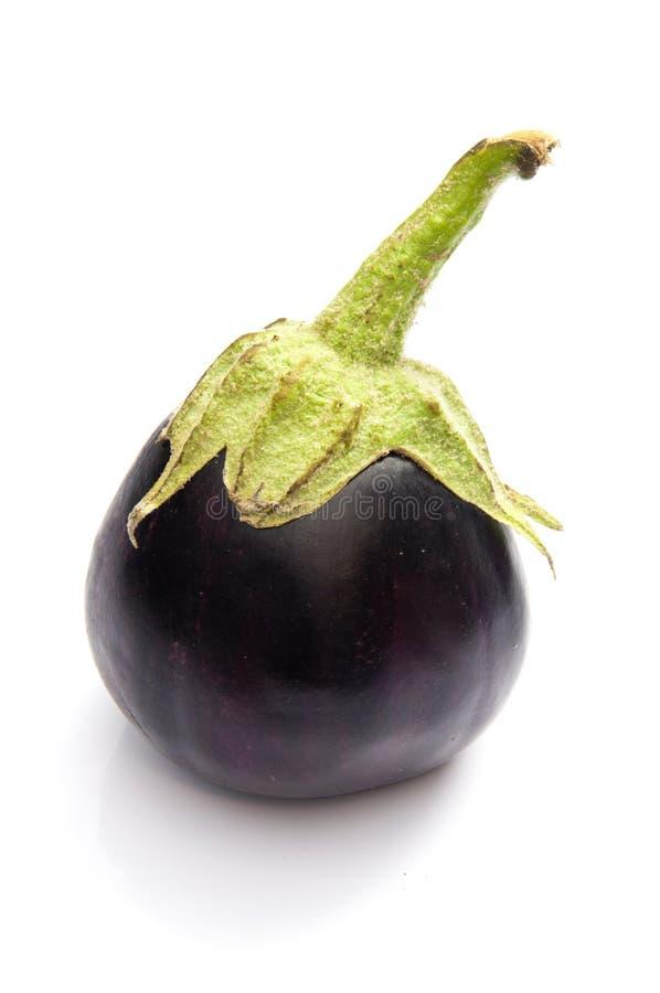 Download Eggplant stock photo. Image of garden, gourmet, full - 20652020