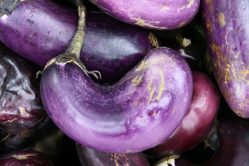 Download Eggplant Royalty Free Stock Photo - Image: 21156705