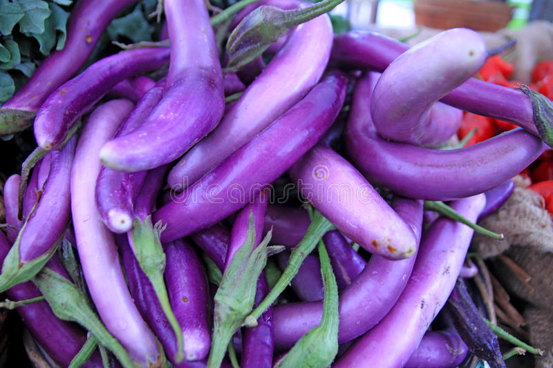 Download Eggplant stock image. Image of food, colourful, eggplant - 21775635