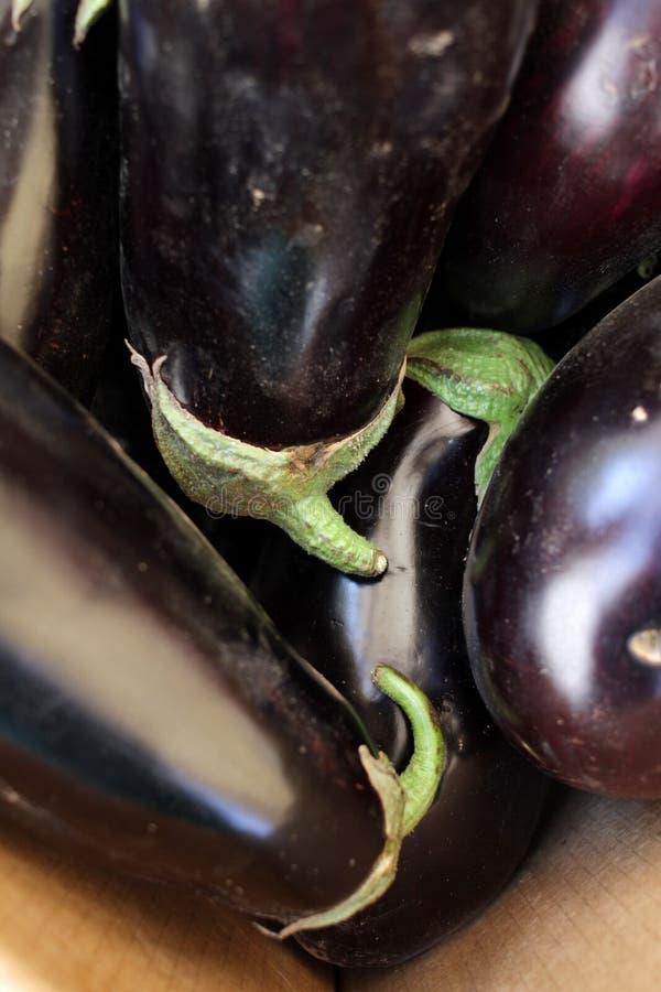 Eggplant. Fresh organic aubergine. Vegetables pattern. Eggplant. Fresh organic aubergine. Vegetables pattern stock images