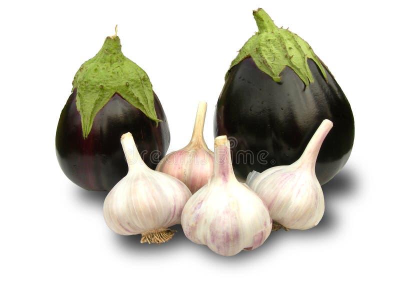 Download Eggplant and garlic. stock photo. Image of eggplant, white - 15500064