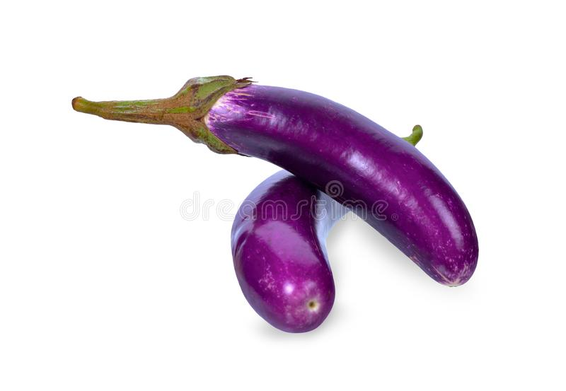 Eggplant on white background. with clipping paths royalty free stock photo