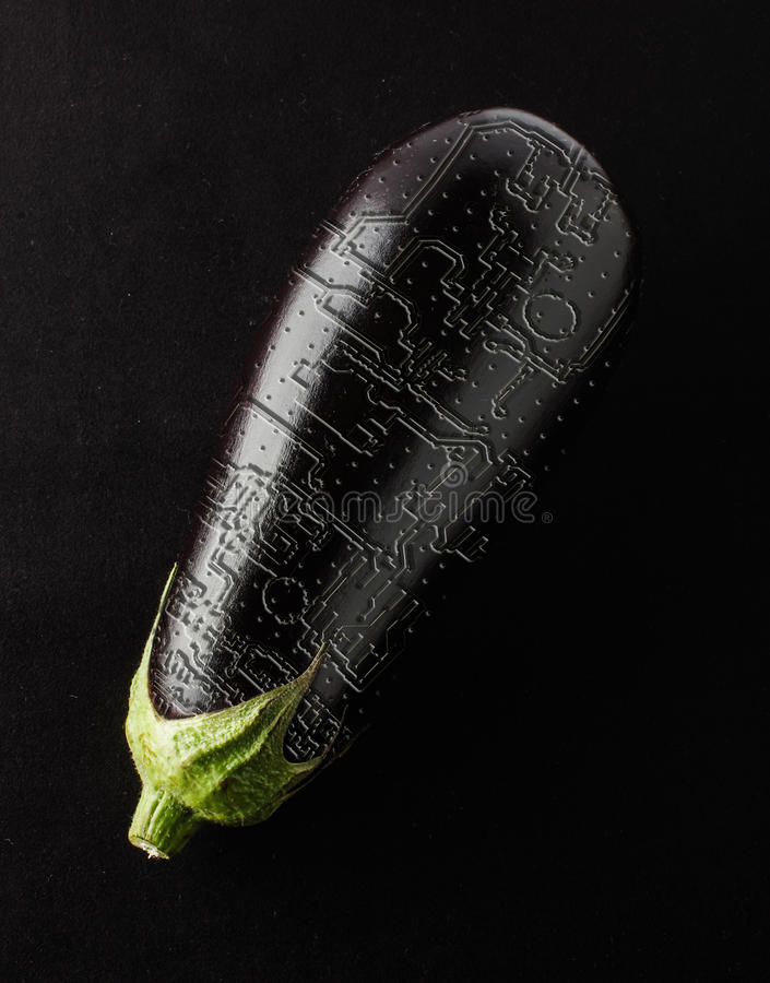 Eggplant with printed circuit board in the cortex. Vegetable and printed circuit board tracks stock image