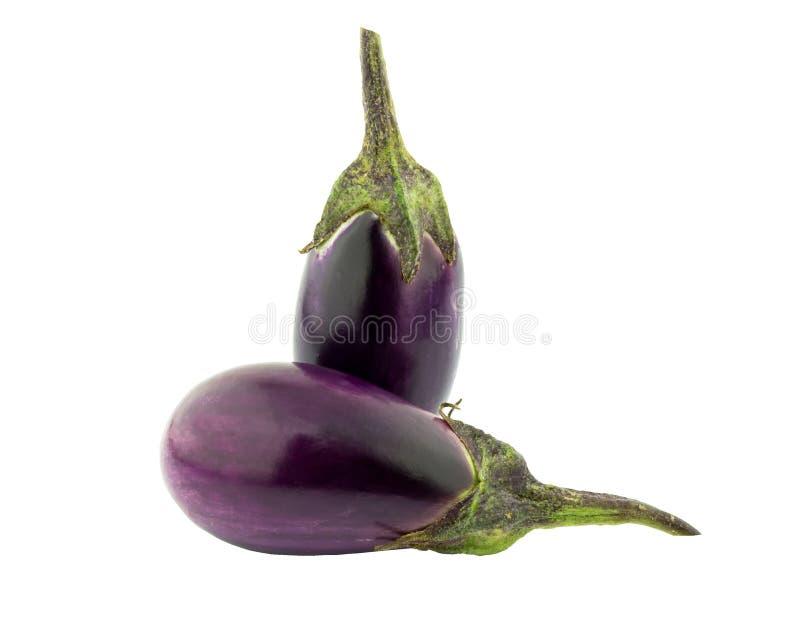 Eggplant purple vegetable food. NEggplant purple vegetable food on white stock images