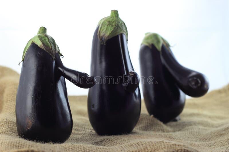 Eggplant trio royalty free stock images