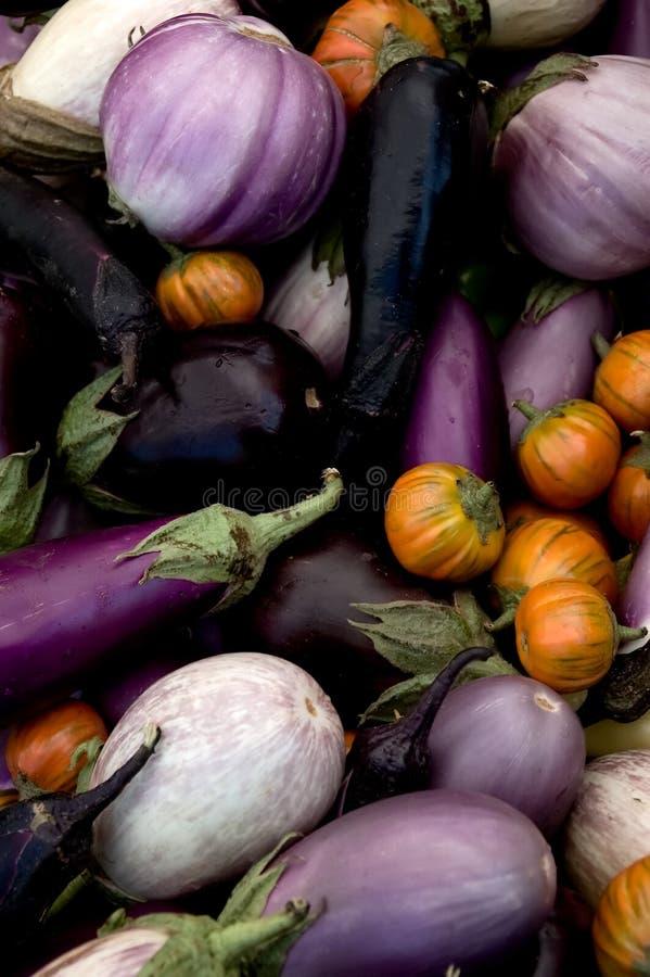 Eggplant Varieties. Multi-colored eggplant varieties at the farmers' market royalty free stock image