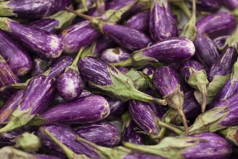 Eggplants. A hip of white and purple eggplants on the farmer's market stock image