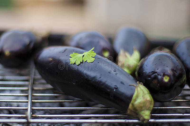 EggPlants on grill with parsley leaf royalty free stock images