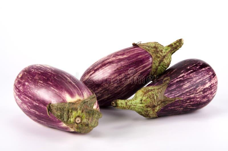 Eggplants stock photography