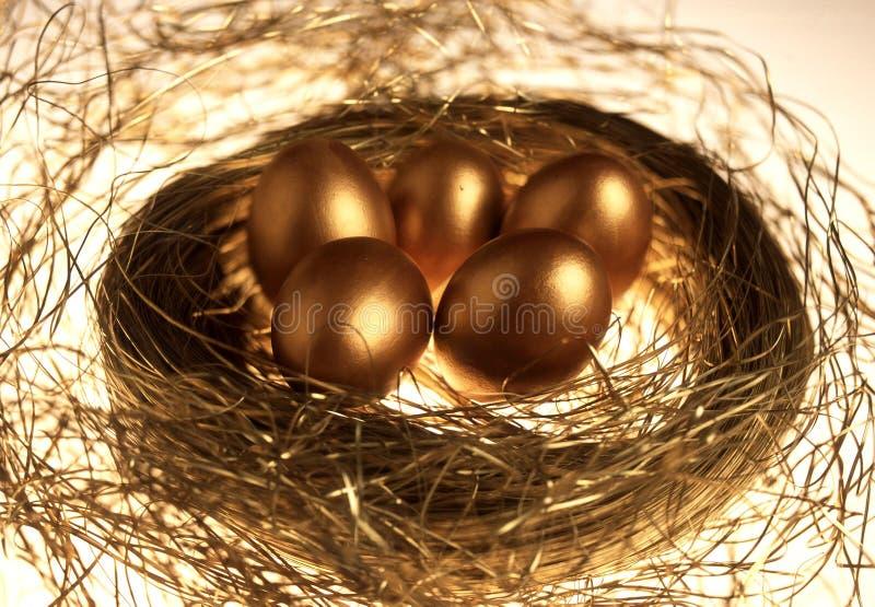 eggs золотистое стоковые фотографии rf