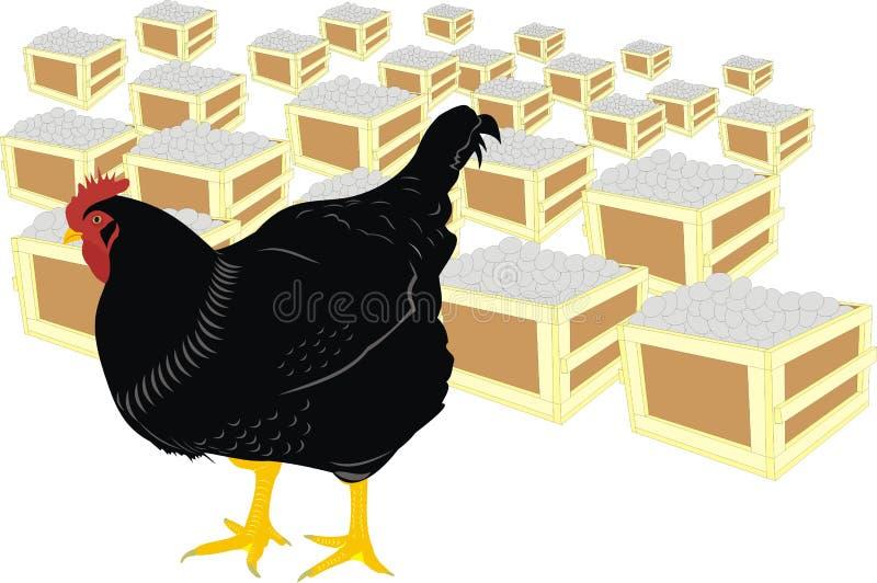 eggs курица иллюстрация вектора