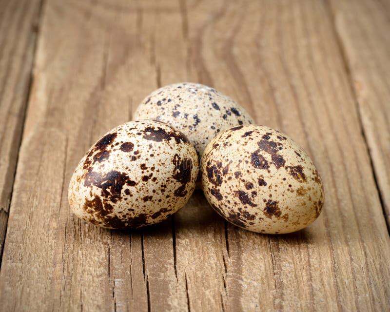 eggs триперстки 3 стоковое изображение rf