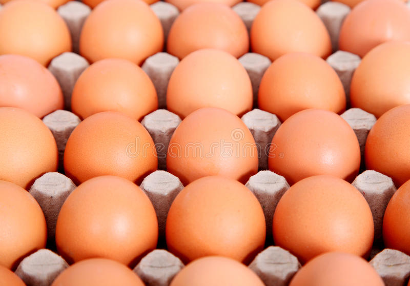 Download Eggs stock photo. Image of farm, breakfast, eating, industry - 11649752