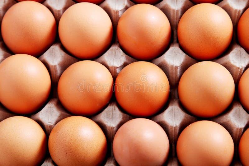 Download Eggs stock image. Image of brown, breakfast, close, ingredient - 11649977