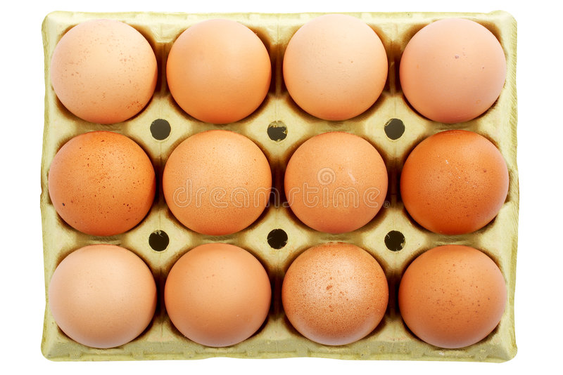 Download Eggs stock image. Image of eggs, ingredient, birth, container - 1749565