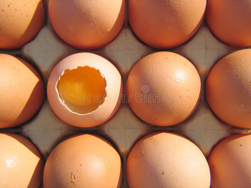 Download Eggs stock image. Image of fresh, yolk, eggs, poultry, fragile - 190677