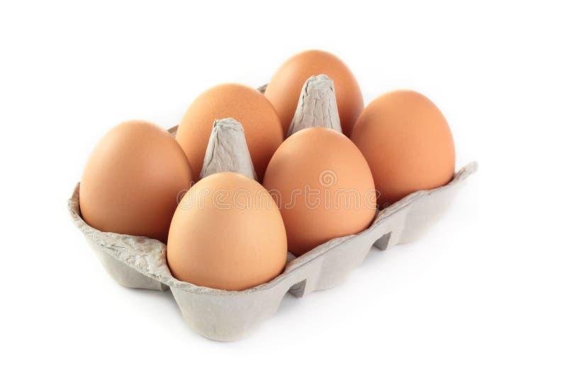 Eggs. A carton of fresh free range eggs on a white background stock image