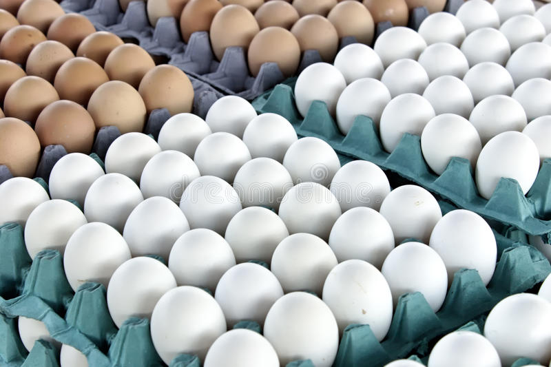 Download Eggs Stock Photos - Image: 23541403