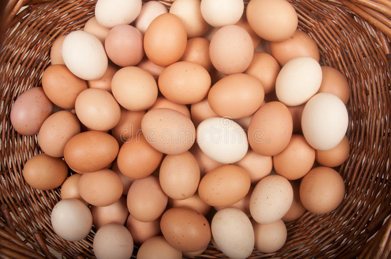 Download Eggs stock image. Image of wooden, background, yolk, protein - 26424881