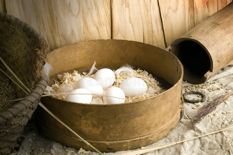 Eggs. It is eggs very tasty and wholesome food stock photography