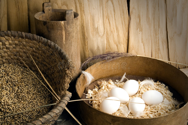 Eggs. It is eggs very tasty and wholesome food stock photo