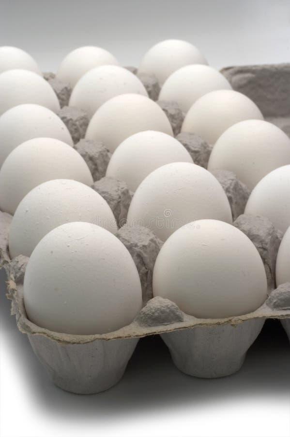 Eggs. A carton of 18 eggs royalty free stock photography