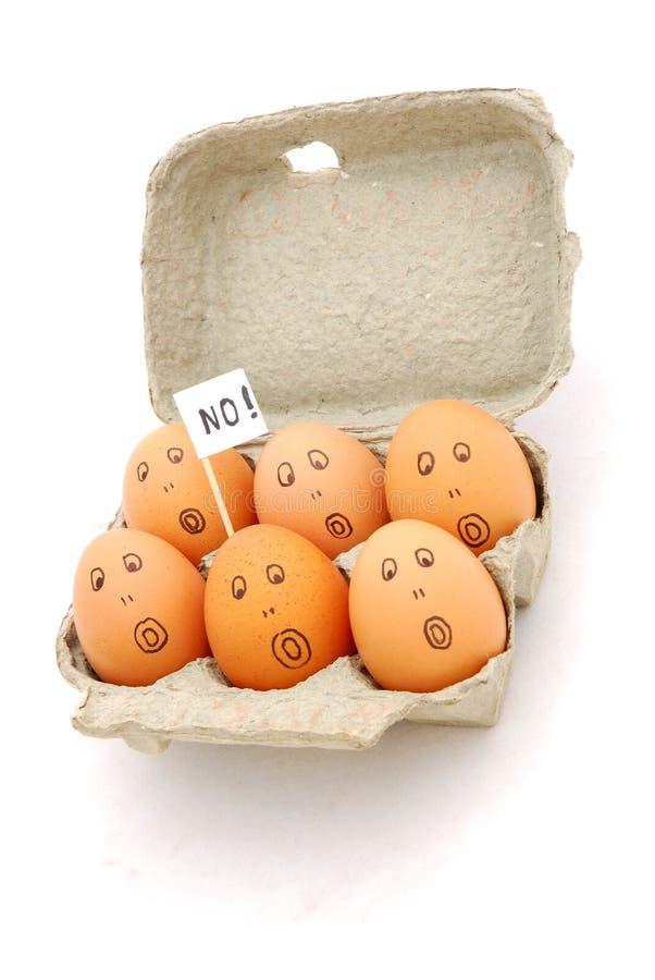 eggs стоковые фото