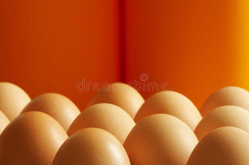 Eggs. Some eggs - image can be used for a cover of a brochure stock photo