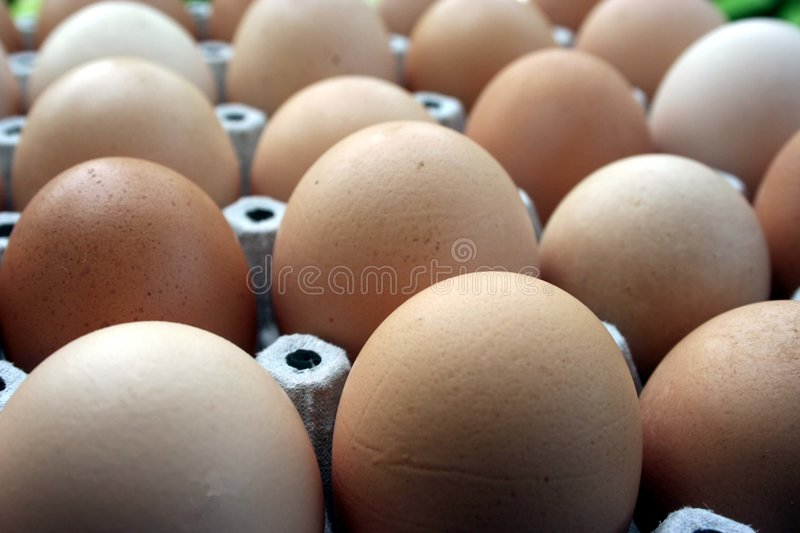 Eggs. In a flat royalty free stock images