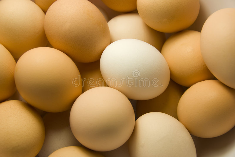 Download Eggs stock image. Image of spices, breakfast, eastern - 9091675