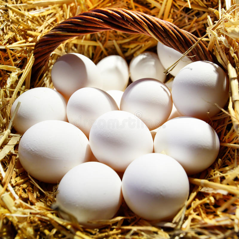 Download Eggs In Basket Stock Photography - Image: 19963702