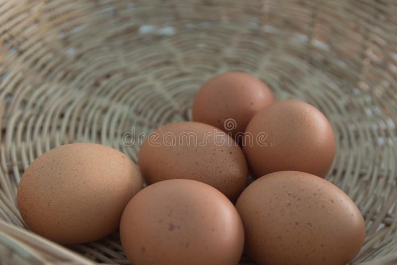 Eggs in the basket. royalty free stock image