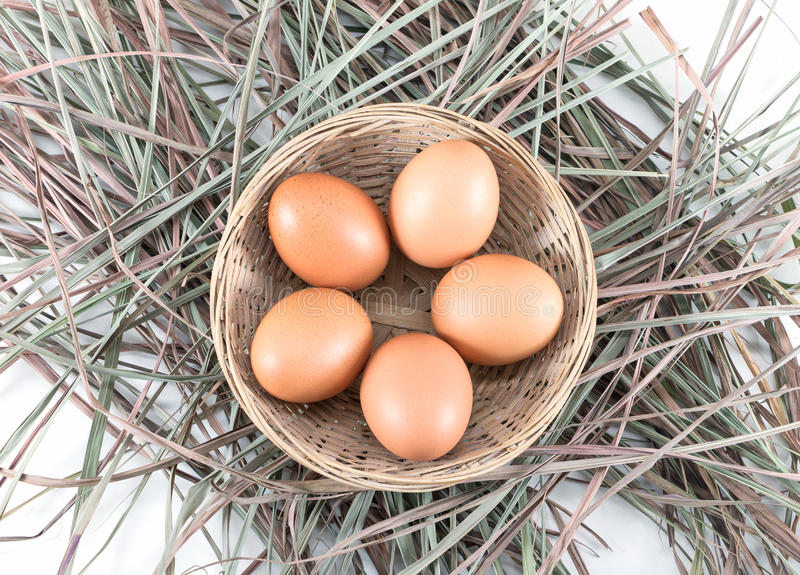 Eggs Basket with eggs in straw stock image