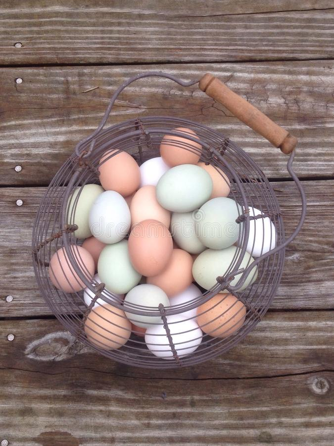 Eggs in a basket. Eggs in a vintage basket stock photography