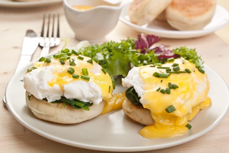 Eggs Benedict stock photos