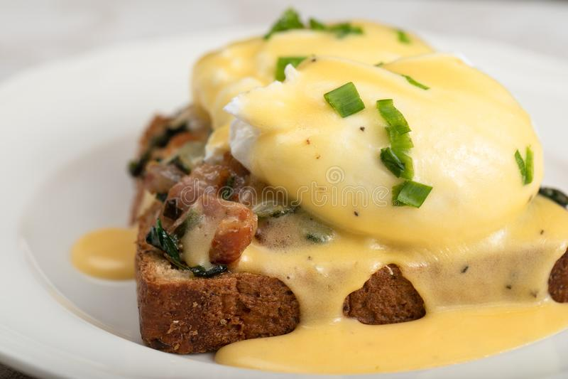 Eggs Benedict for brunch stock image